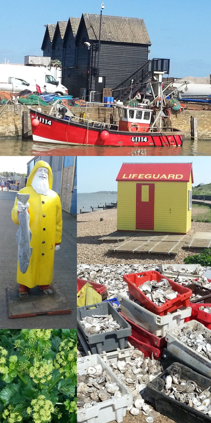 whitstable01