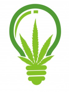Washington State Marijuana Laws - marijuana light bulb