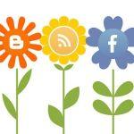 Encuentro social media musical del 25 al 27 de Julio en Peñafiel