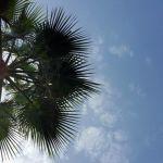 4 razones para escribir en un blog en verano