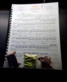 Musicos-profesionales-como-deportistas-de-elite-david-peralta-alegre-garmin-forerunner-235-parsifal