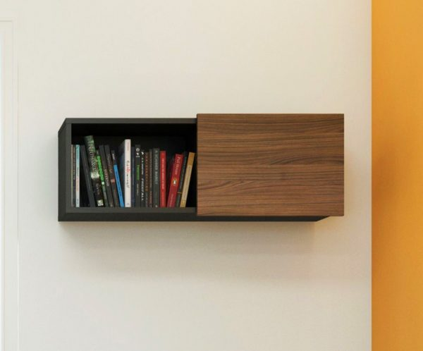 Unique Wall Shelf with Sliding Door