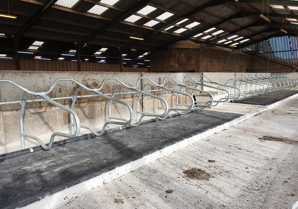 Project for Customer completed this morning for 20 Transition Cows