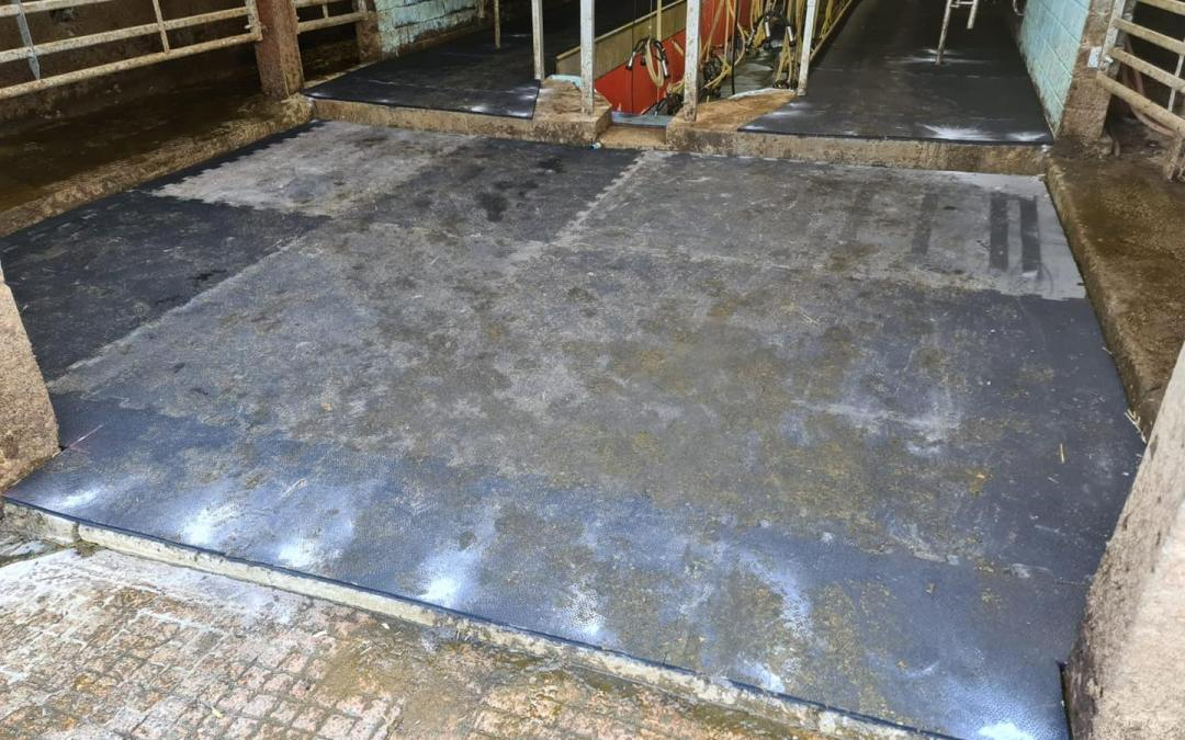 Rubber Interlocking Floor – Cheshire