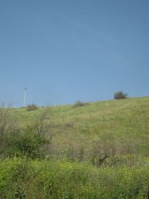 This is the countryside where Jesus gave many of his sermons