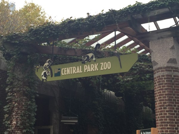 Central Park Zoo York Ny David' Coin Travels