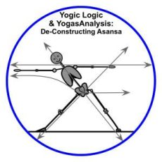 Yogic Logic & YogasAnalysis - Triangle & Lines of Energy for Yoga Therapy: structural yoga therapy