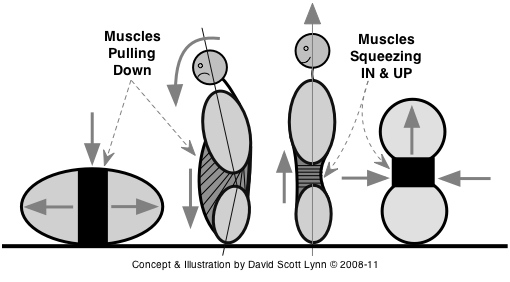 water pressure, the core, posture, structure
