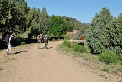 Walking through Chamberlain Ranch.
