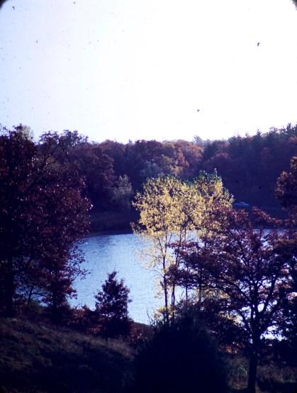 Theo Wirth Park
