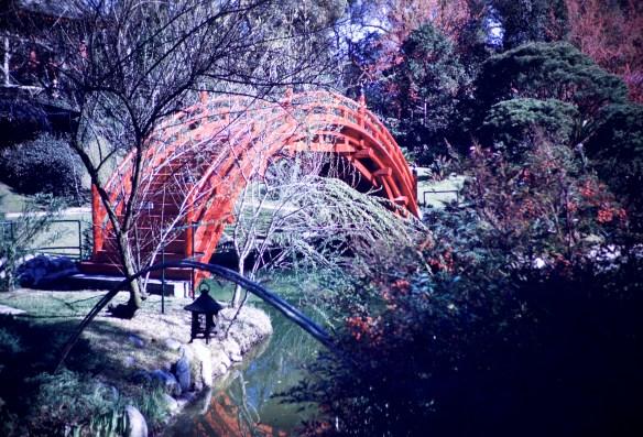 Huntington Library and Art Gallery - Jap Bridge - Oriental Garden
