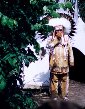 Minnesota - Indian Chief