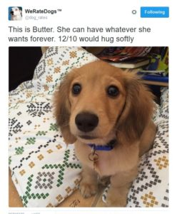 wrd-butter