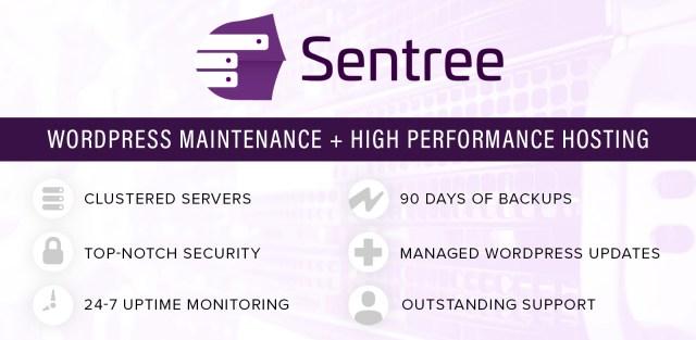 <span>Sentree Managed Hosting with WordPress Maintenance