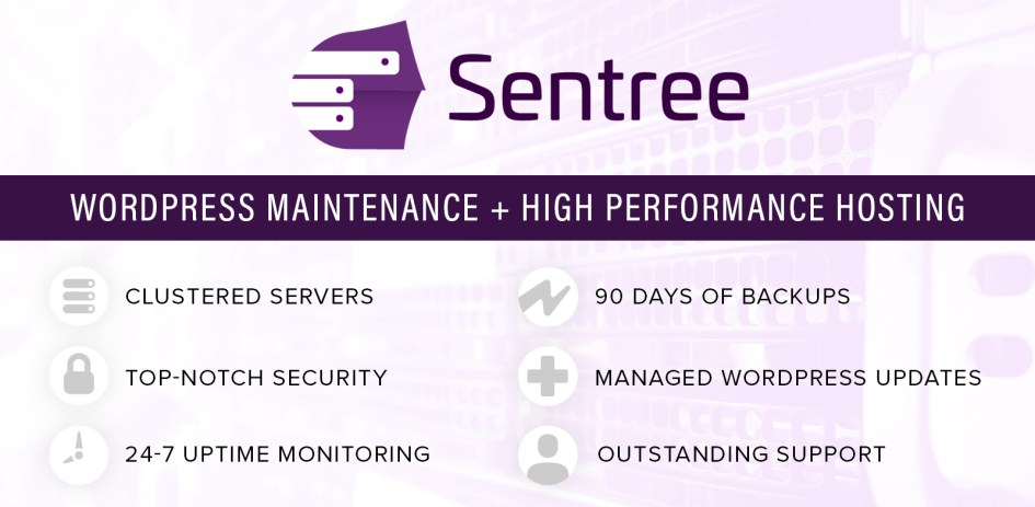 <span>Sentree Managed Hosting with WordPress Maintenance