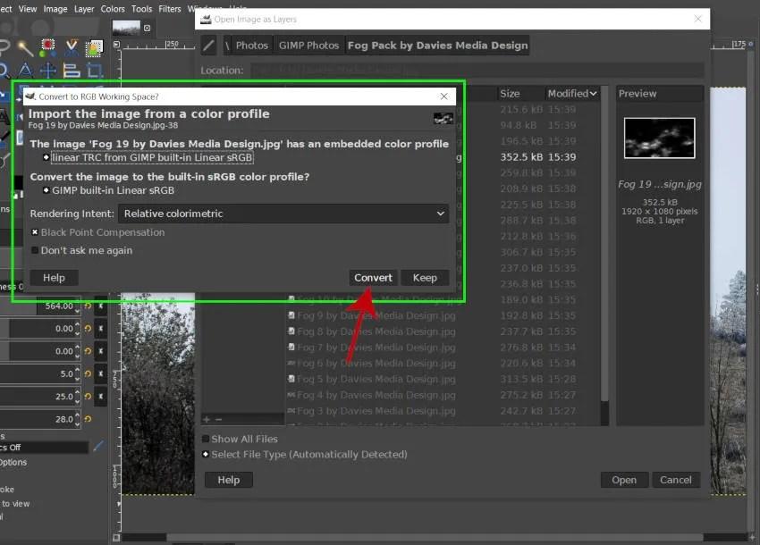 Fog Download Convert to GIMP Собственный цветовой профиль