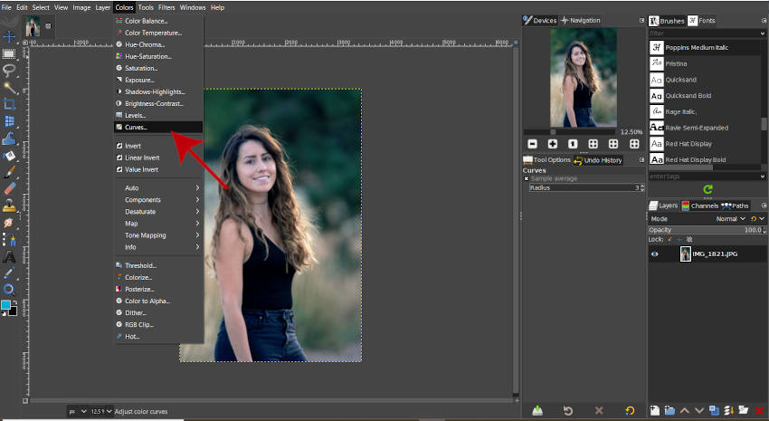 Tutoriel Image Curves GIMP 2020