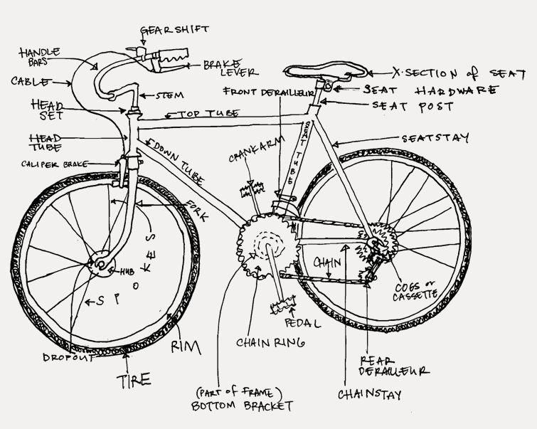 Bicycle Headset Parts Diagram