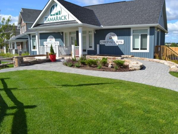housing development landscaping