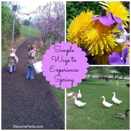 Simple Ways Spring