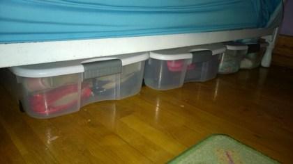 Under_The_Bed_Storage