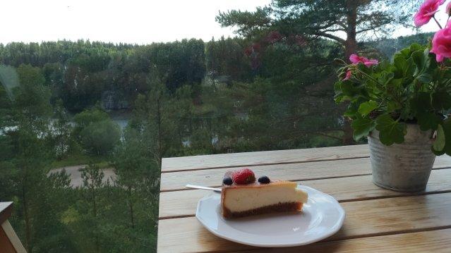 Cheesecake - Haltia 1