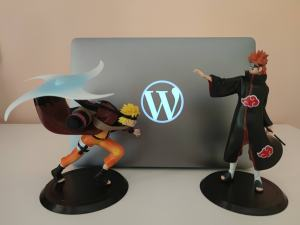 W laptop, Naruto, Pain