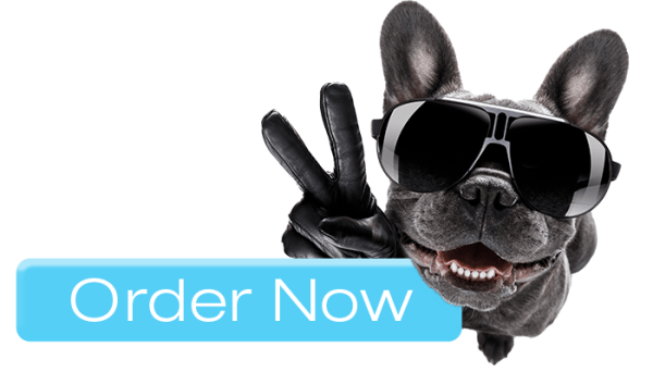 Symptoms to Watch for in Your Dog: Order