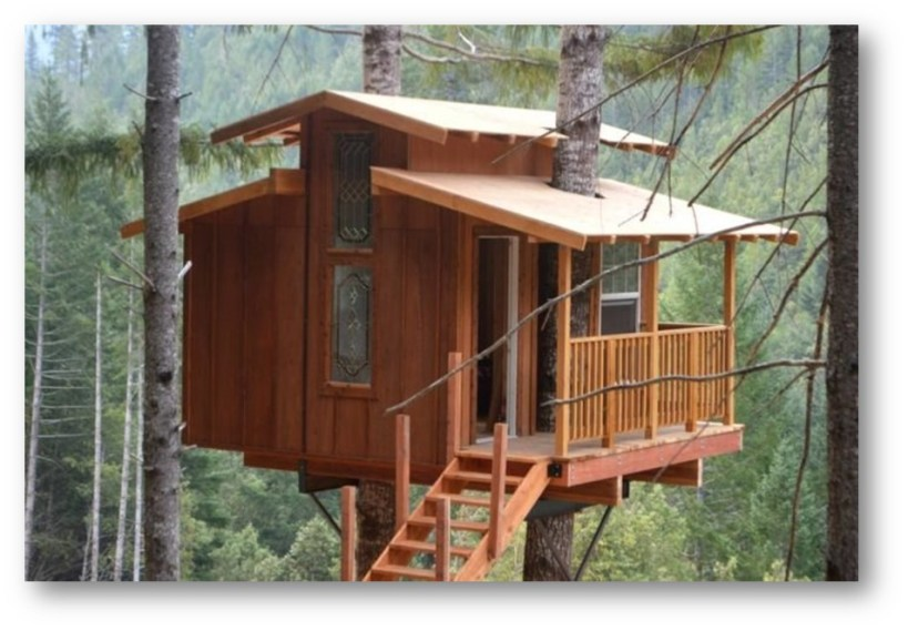 NOR CAL ADVENTURES A FOREST TREEHOUSE