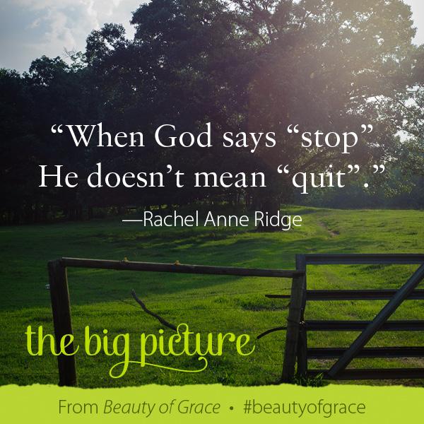 Rachel Anne Ridge The Beauty of Grace #beautyofgrace