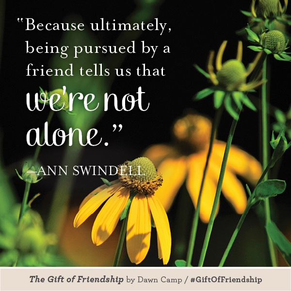 Ann Swindell The Gift of Friendship #GiftofFriendship