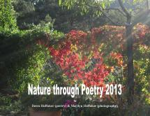 Free Verse Poetry About Nature - Year of Clean Water