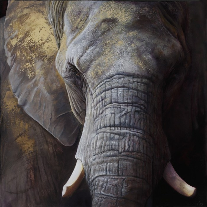 (African elephant from the Maryland Zoo in Baltimore) 48 x 48, oil on canvas, 2016 SOLD