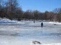parc la fontaine ice rink 6