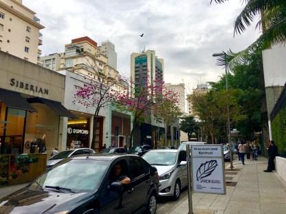 Sao Paulo Travel Guide
