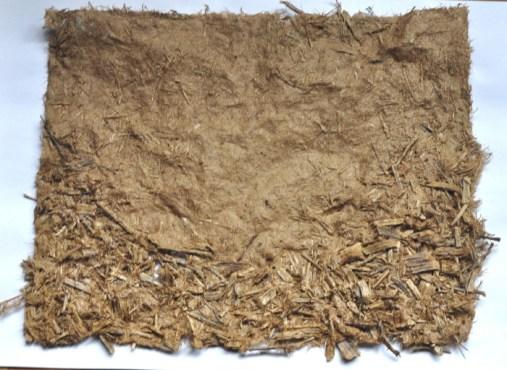 100% eucalyptus paper