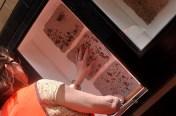 Installing Lichen Landscape- Paper Pulp with Lichen inclusions