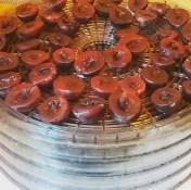 Making Prunes