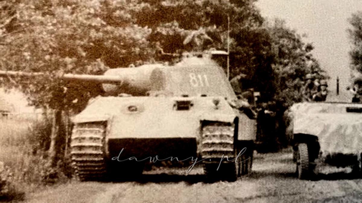 Poszukiwania Pantery z 5. Dywizji SS Wiking w Jasienicy
