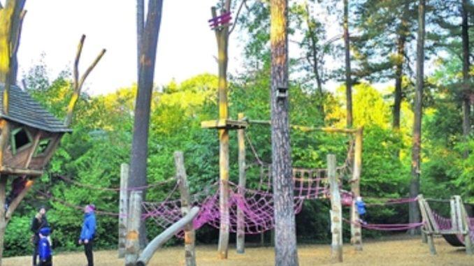 Der Spielplatz mit den vielen Klettermöglichkeiten und die geschwungenen Wege durch den alten Baumbestand locken Jung und Alt in den Kleinzschachwitzer Waldpark. Foto: Sylvia Miskowiec