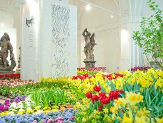 Die Ausstellung im Palais im Großen Garten ist ein Genuss fürs Auge, nicht nur für Blumenfreunde. Foto: PR