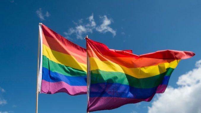 Regenbogenfahnen wehen. Foto: Gregor Fischer/Archiv