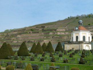 Blick auf das Schloss Wackerbarth in Radebeul. Foto: Arno Burgi/Archiv