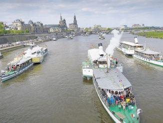 Jedes Jahr ein Höhepunkt: Die Flottenparade der Dampfer auf der Elbe Foto: SZ / Christian Juppe