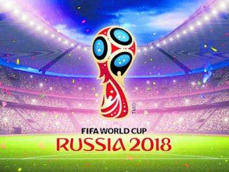 Vom 14. Juni bis zum 15. Juli findet in Russland die Fußball-Weltmeisterschaft statt.
