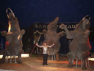 Dresseur Hardy Weisheit mit seinen Elefanten. Foto: PR
