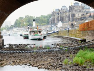 Der niedrige Wasserstand der Elbe lässt auch in diesem Juli die Schiffe der Sächsischen Damfschiffahrt zum Teil ruhen. (Foto: Juliane Zönnchen)
