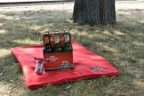 Gemütlich der Kaisermania im August lauschen, ist mit unserem Feldschlösschen Paket kein Problem. (Foto: Juliane Zönnchen)