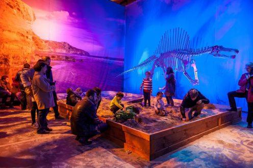 Man kann sich auch selbst als Archäologe versuchen und echte Fossilien entdecken. (Foto: PR)