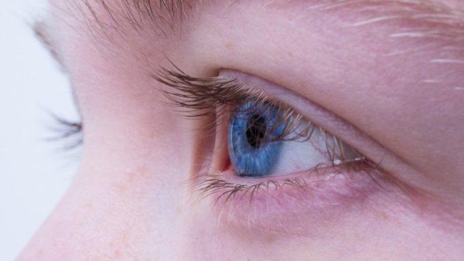 Wie wichtig das Sehen für einen Menschen ist, wissen insbesondere jene Mitbürger, denen diese Möglichkeit nicht oder weniger gegeben ist. Darauf sensibel aufmerksam machen möchte die bundesweite Woche des Sehens. (Foto: pixabay)
